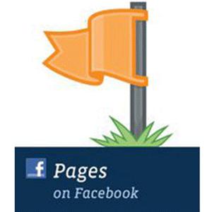 facebookpageslogo